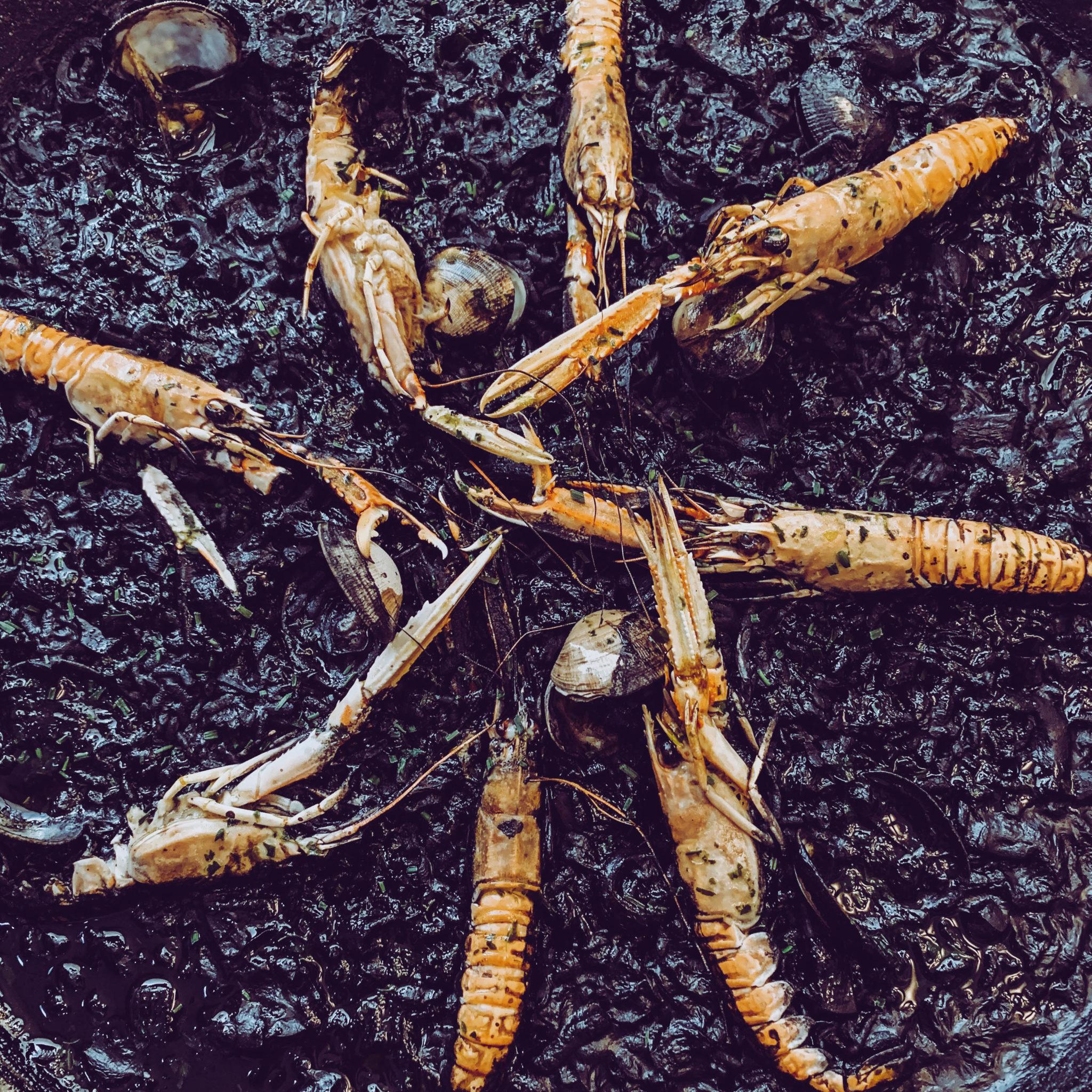 arroz negro con escamarlanes